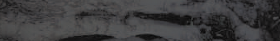 cropped-distcover11.png